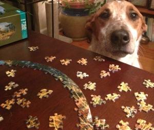 puzzle dog