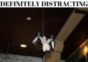 DEFINITELY DISTRACTING