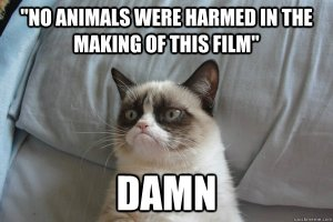 No Animals Harmed